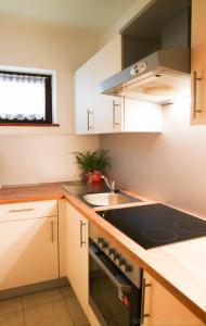 מטבח או מטבחון ב-Saalbach Apartments Landhaus Bernkogel