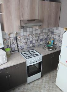 Кухня или мини-кухня в Comfortable apartments on Anokhina