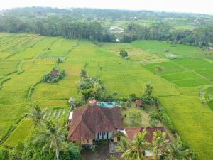 A bird's-eye view of Villa Hati