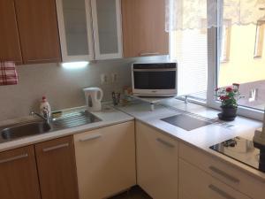 A kitchen or kitchenette at Grant Apartments Bratislava