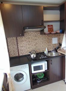 Кухня или мини-кухня в Apartment on Sobornyi avenue 133