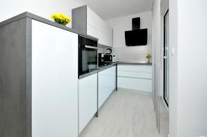 Kuchyň nebo kuchyňský kout v ubytování Apartment Adrian II