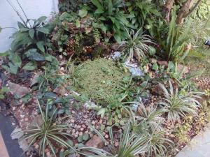 A garden outside Casa em local aprazível