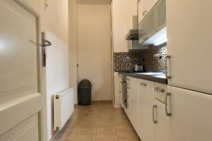 Η κουζίνα ή μικρή κουζίνα στο Janalex Wenceslas Square Apartments II