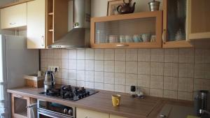 A kitchen or kitchenette at Cozy apartment in Trakai