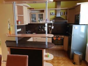 Küche/Küchenzeile in der Unterkunft Apartman Aneta