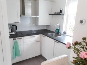 A kitchen or kitchenette at Duinhuis26