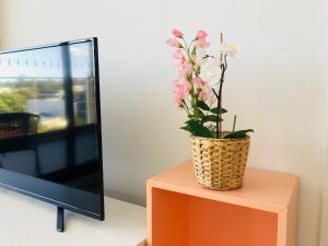 A television and/or entertainment center at Brand New luxury Apartment near CBD and University