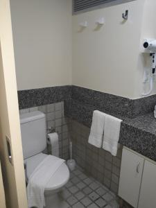 A bathroom at Flat Edf Golden Beach