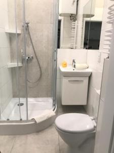 A bathroom at P&J Apartamenty Św. Krzyża