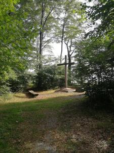 Ein Garten an der Unterkunft Ferienwohnung am Bodensee Heiligenberg