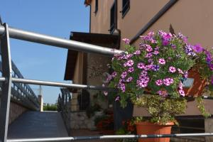 A balcony or terrace at I Narcisi
