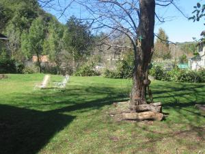 Un jardín fuera de Lago Moreno ( Circuito Chico )