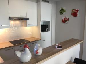 Cuisine ou kitchenette dans l'établissement Residentie Week-end Elisalaan