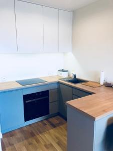 Kuchnia lub aneks kuchenny w obiekcie Apartament Nadmorski Gdańsk