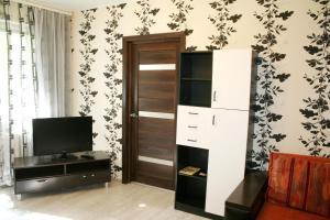 Телевизор и/или развлекательный центр в Impreza Apartment на Авиационной
