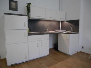 Kuchyň nebo kuchyňský kout v ubytování Moskevská 40