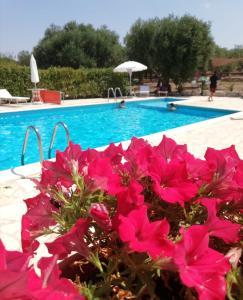 Swimmingpoolen hos eller tæt på Antiche Dimore TerraRossa