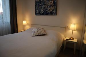 Posteľ alebo postele v izbe v ubytovaní The Luxury Marija Apartment