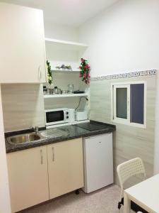 Una cocina o zona de cocina en Enjoy Malaga Apartamentos Conde
