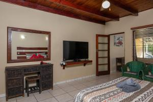 A television and/or entertainment center at Manzini Holiday Resort