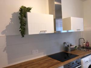 Majoituspaikan LE CLOS DES JOCKEYS keittiö tai keittotila