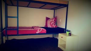 A bunk bed or bunk beds in a room at Háj 155