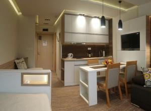 Kuhinja ili čajna kuhinja u objektu Apartment Dream Konaci