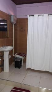 Un baño de Flia Ocampo