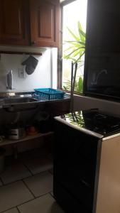 Una cocina o zona de cocina en Flat Champagne