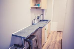 A kitchen or kitchenette at Apartamenty 21 Basic