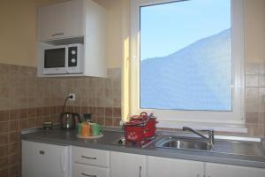 A kitchen or kitchenette at Skipension Jasná