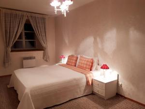 Voodi või voodid majutusasutuse Vene 23 Apartments toas