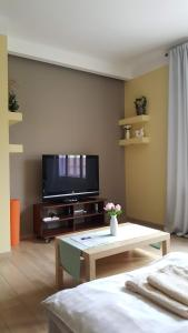 A television and/or entertainment center at Hellichova Apartment