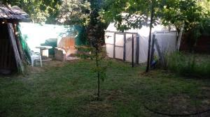 Un jardín fuera de Arrayanes