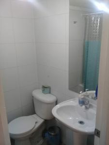 Un baño de Departamento Central Santiago
