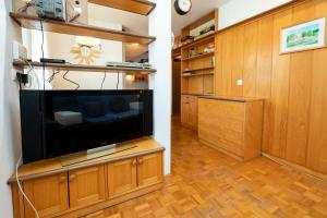 TV in/ali zabaviščno središče v nastanitvi Apartment Alpinea