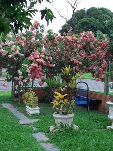 A garden outside Casa de Temporada em Bonito