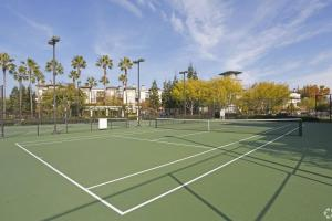 Tennis and/or squash facilities at Enclave Luxury Apartments 7 - #319 or nearby