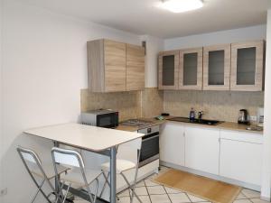 A kitchen or kitchenette at AVI Deluxe Altstadt Apart