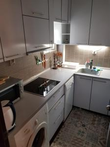 Кухня или мини-кухня в Apartment Danubius