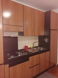 A kitchen or kitchenette at Carinissimo appartamento a 2km dalle piste