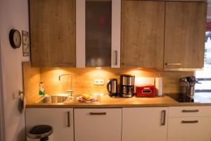 A kitchen or kitchenette at Almsternchen 2 & 3