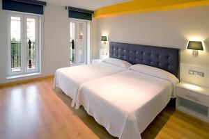 A bed or beds in a room at Apartamentos Spa Villa Pasiega