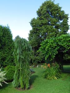 A garden outside Appartements du Lac
