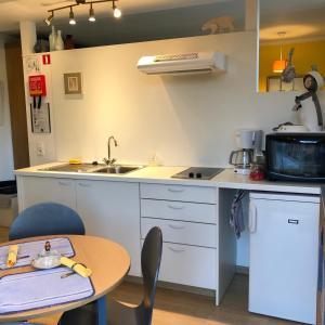 Een keuken of kitchenette bij Linden-Jachthoorn