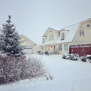 The White House v zimě