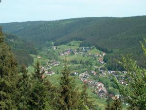 מבט מלמעלה על Apartmenthaus Schwarzwaldgrund