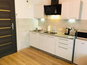 Kuchnia lub aneks kuchenny w obiekcie Na Przełaj - Apartament Zakopane
