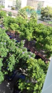 Vista de la piscina de Apartment on Carrer del Dr. Lluch o alrededores